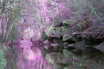Art Print featuring the photograph Purple Rock Reflection by Lorna Rogers Photography