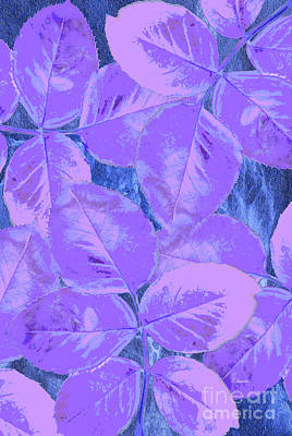 Romanticism Mixed Media - Purple Rose Clippings 1 by Claudia Ellis