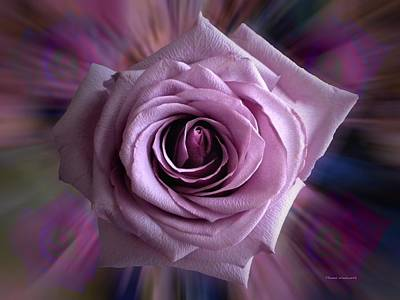 Purple Rose Art Print by Thomas Woolworth