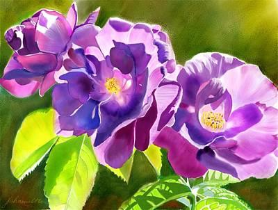 Purple Roses Art Print by Joan A Hamilton