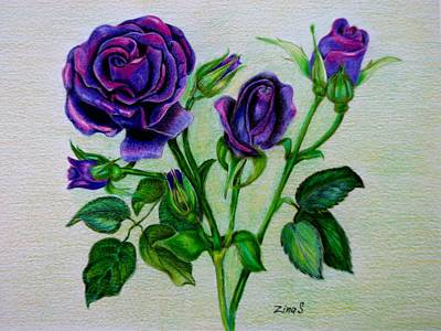 Garden Drawing - Purple Roses by Zina Stromberg