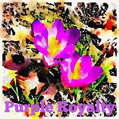 Purple Wall Art - Photograph - Purple. Royalty. Crocus. Spring by Teresa Mucha