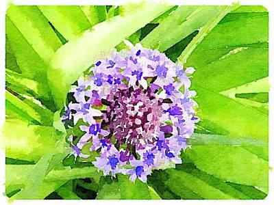 Digital Art - Purple by Shannon Grissom