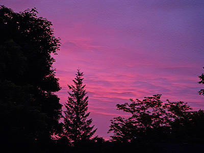 Photograph - Purple Sky At Night by Aimee L Maher Photography and Art Visit ALMGallerydotcom