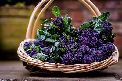 Purple Sprouting Broccoli Print by Aberration Films Ltd