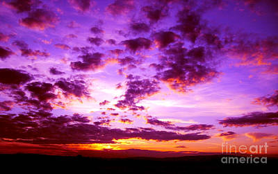 Photograph - Purple Sunset by Nina Ficur Feenan