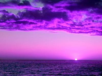 Photograph - Purple Sunset by Steed Edwards