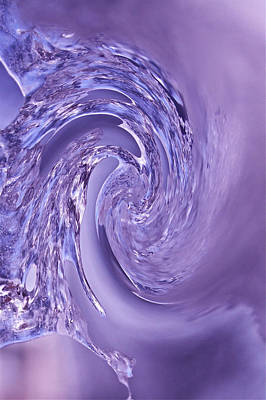 Photograph - Purple Swirl by Kathleen Scanlan