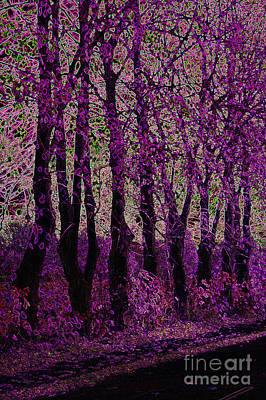 Purple Trees Art Print by Carol Lynch