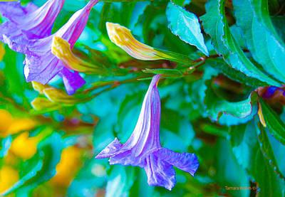 Have A Cupcake - Purple trumpet3-1 by Tamara Kulish