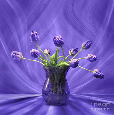Digital Art - Purple Tulips In Purple Room by Johnny Hildingsson