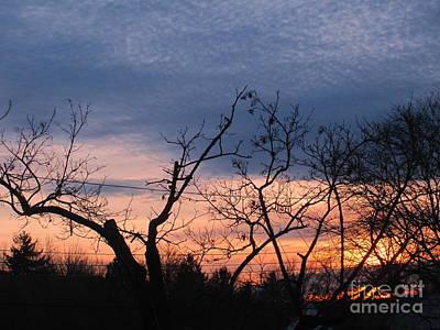 Photograph - Purple Twilight  by Tara  Shalton