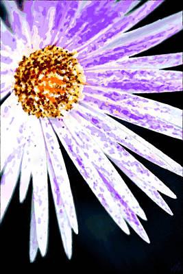 Stellar Interstellar - Purple Vexel Flower by Bruce Nutting