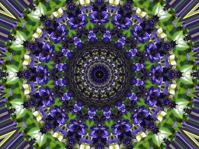Photograph - Purple Violet Floral Kaleidoscope by Sheri McLeroy