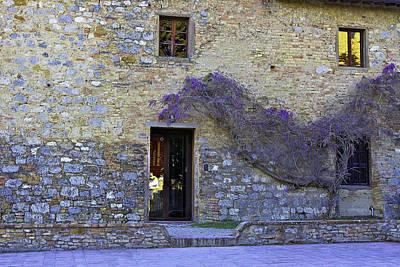 Photograph - Purple by Walt  Baker