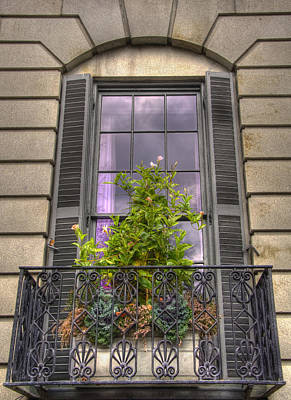 Photograph - Purple Window In Beacon Hill by Joann Vitali