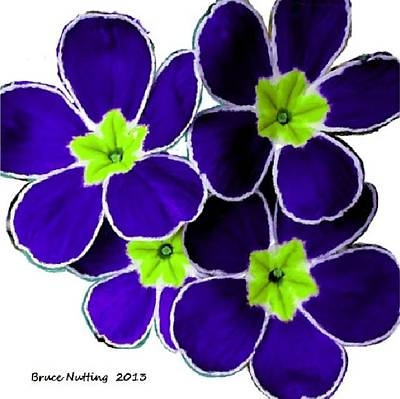 Beers On Tap - Purple with Green Primrose by Bruce Nutting