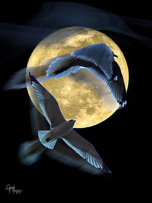 Pursuit Over The Moon. Art Print by Glenn Feron