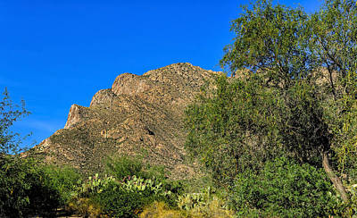 Mark Myhaver Royalty Free Images - Pusch Ridge No.6 Royalty-Free Image by Mark Myhaver