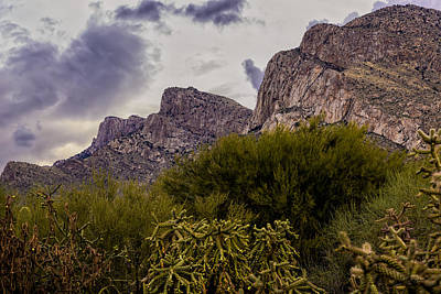 Mark Myhaver Royalty Free Images - Pusch Ridge Peaks No.15 Royalty-Free Image by Mark Myhaver