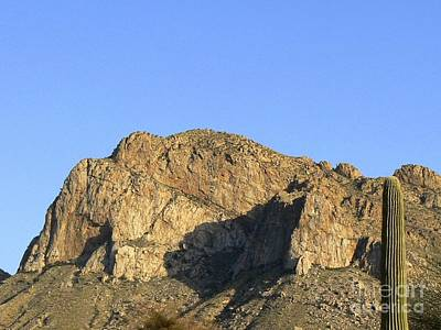 Rincon Mountains Wall Art - Photograph - Pusch Ridge With Saguaro by Rincon Road Photography By Ben Petersen