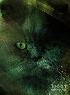 Veterinary Digital Art - Pushkah by Elizabeth McTaggart