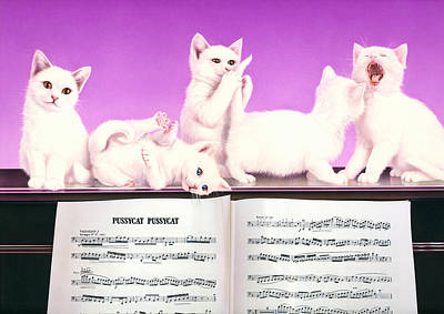 Piano Photograph - Pussy Cat Pussy Cat by Andrew Farley
