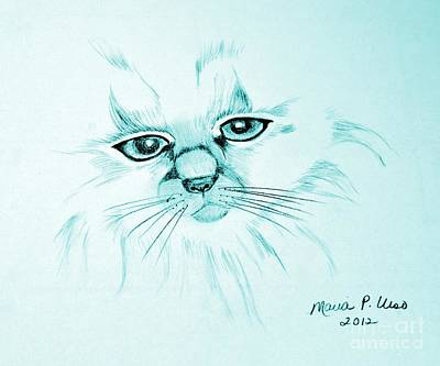 Drawing - Pussycat Blues by Maria Urso