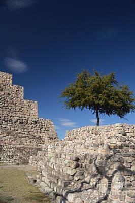 Photograph - Pyramidal Pals At Teotihuacan by Brian Boyle
