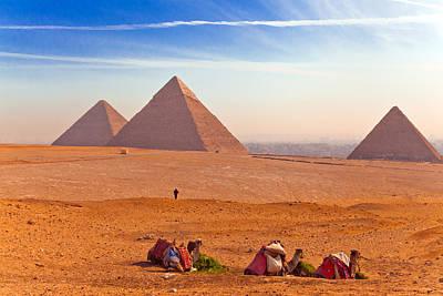 Pyramids And Camels Art Print