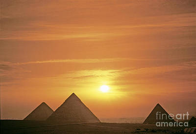 Photograph - Pyramids In Egypt by Adam Sylvester