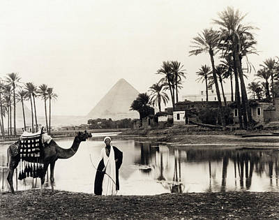 Photograph - Pyramids Of Giza Oasis by Underwood Archives