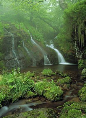 Pyrenees Photograph - Pyrenees Stream France by Panoramic Images