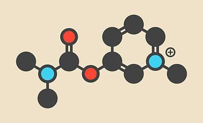 Pyridostigmine Cholinesterase Molecule Art Print by Molekuul
