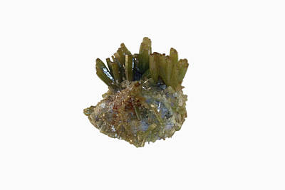 Single Object Photograph - Pyromorphite Crystals by Science Stock Photography