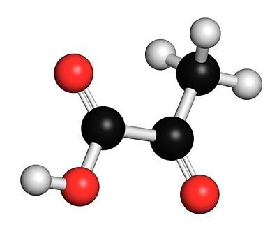 Pyruvic Acid Pyruvate Molecule Art Print by Molekuul