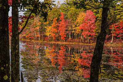 Photograph - Quabbin Reservoir Fall Foliage by Jeff Folger