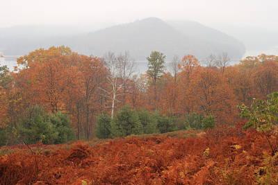 Quabbin Reservoir Late Autumn Oak And Fern Foliage Art Print