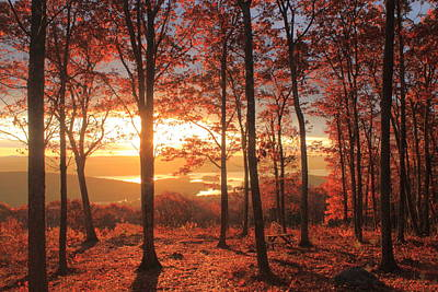 Quabbin Reservoir Photograph - Quabbin Reservoir Oak Foliage Sunrise by John Burk