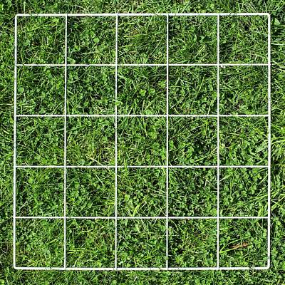 Defining Photograph - Quadrat On A Lawn by Science Photo Library