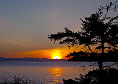 Photograph - Qualicum Sunrise by Randy Hall