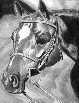 Quarter Horse Hunter Art Print by Olde Time  Mercantile