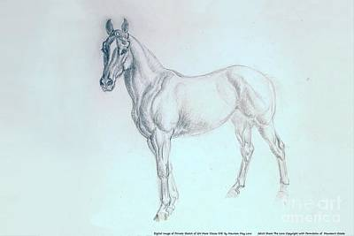 Maureen Drawing - Quarter Horse Mare Cocoa Silk by Maureen Love