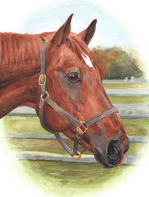 Drawing - Quarter Horse Watercolor Portrait by Mike Theuer