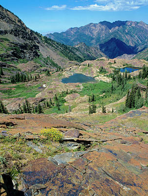 Big Cottonwood Canyon Photograph - Quartzite Rock Polished By Glacier by Howie Garber