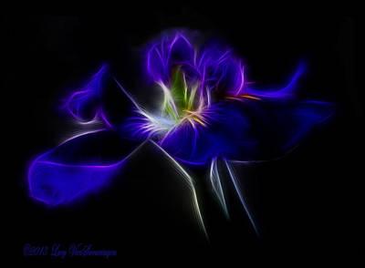 Photograph - Quasar Iris by Lucy VanSwearingen
