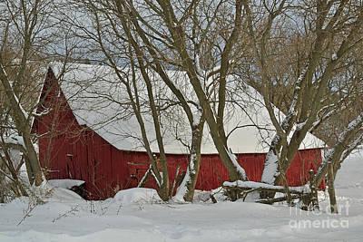 Photograph - Quebec Winter by Joshua McCullough