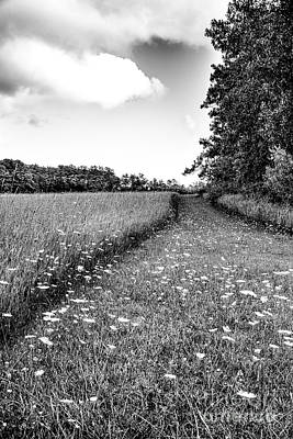 Photograph - Queen Anne's Way by Jim Rossol