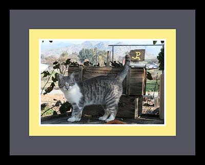 Queen Kitty Art Print by Marsha Ingrao