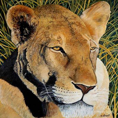 Queen Of The African Savannah Art Print by Caroline Street